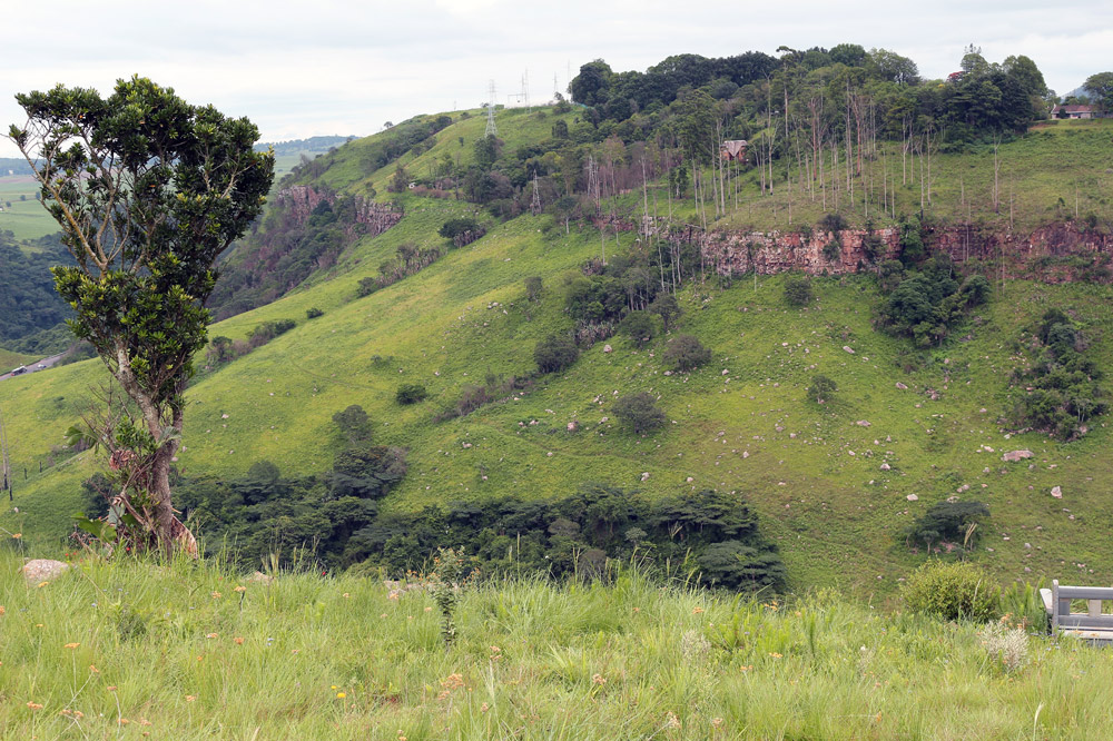 KZN Sandstone Sourveld, photo by Lyle Ground